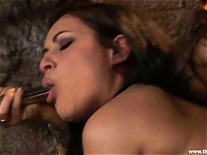 Alluring Charley pursue gets plaything banged by Lisa Ann